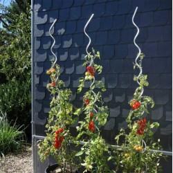Spiralna podpora do pomidorów